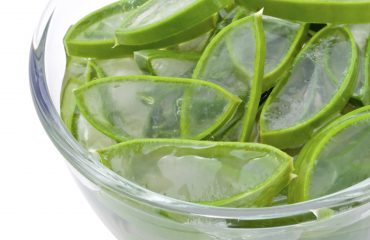 Wonderplant aloe vera