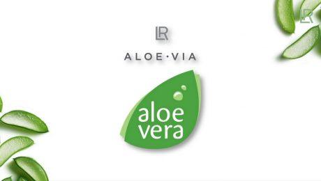 Aloe Via